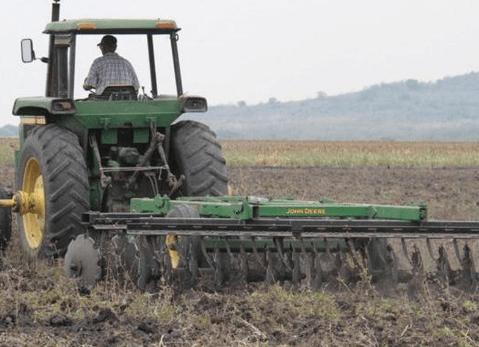 Pronostican reducción de la producción agrícola en Tamaulipas