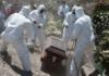 Afirman que han muerto en México más de 600 mil por Covid