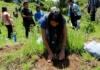 México, país mortal para ambientalistas