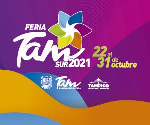Feria Tampico Sur 2